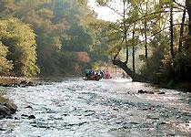 Nine small streams travel  Nan Ping of China