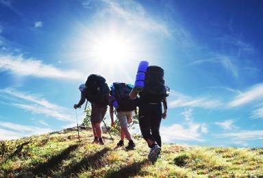 Tourism back on track