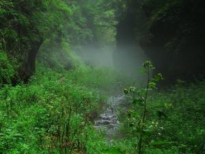 Travel at the scenic spot of ravine of Mentougou Longmen  Beijing of China