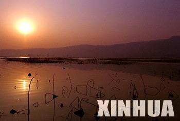 Shanxi: beautiful wetland
