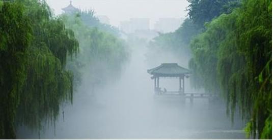 Beautiful Scenery In Misty Rain