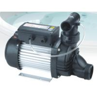 IP55 Low Voltage Self Priming Water Pump Swimming Pool Water Pumps With USA Plug