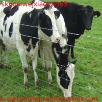 high quality galvanized prairie fence grassland fence wire mesh