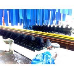 China Automatic car washing machine development report on sale