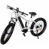 MTB ebikes 48V 1000W Fat E Ebike Mountain Electric Bicycles