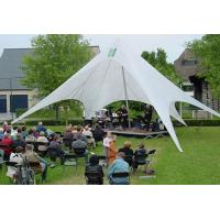 Luxury exhibition tent / Advertising 10m star shape tent / Event tent