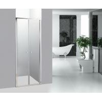 Straight Bathroom Shower Enclosures Double Pivot Shower Doors