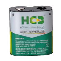 Professional Li-MnO2 Cell Lithium Battery Pack Excellent Safety Performance