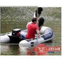 25 Horse Power Outboard Motor