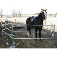 Extremely Long Lasting Horse Corral Panels Heavy Gauge Carbon Steel Material
