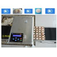 High Resolution Egg Inkjet Date Code Printer With No Need Clean Nozzle