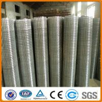 low carbon pvc coated bird cage welded wire mesh roll