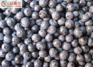 IQF Grade A Frozen Organic Blueberries Wild / Cultivated  HACCP Certification