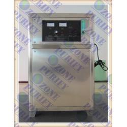 China New design Oxygen source 100g ozone machine on sale