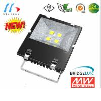 Industrial SMD / COB High Power LED Floodlight 100W for sale