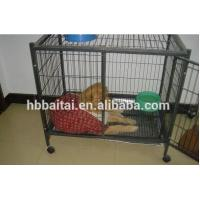 hebei high quality pet  cage