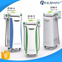 2018 Latest Cryolipolysis Body Slimming Fat Removal Laser