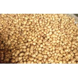 China 150g Smooth Yellow Organic Potatoes No Fleck With Thin Surface on sale