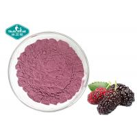 Nutrifirst Mulberry Fruit Powder Dry Storage Support Healthy Vision And Appetite
