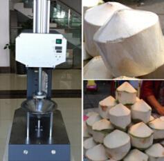 Peeling machine coconut pdf