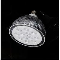 Warm White 24W E27 / E26 1350 - 1550lm Aluminum LED Par Bulbs With D121 * H126mm