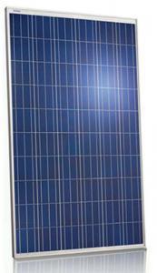 China Pool 250 Watt Polycrystalline Solar Panel36V Withstand High Wind Pressure supplier