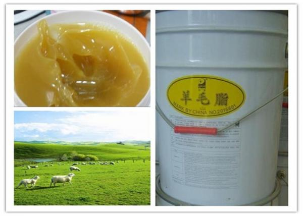 China Lanolin Alcohol / Lanolin Anhydrous Lanolin EOgrease USP / BP / EP HOC6H4COOCH3 supplier