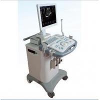 Efficient Imaging Full-Digital Ultrasonic Diagnostic System