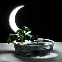 China Chinese style moon lights for reading book with fish tank on sale