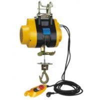 Φ3.8  Φ4.2 mm Diameter Small Electric Hoist 240V With 20 Lifting Height