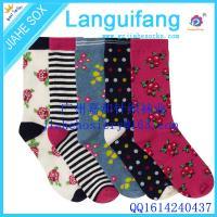 donne calzino,colorful women sock, cotton women sock,China socks factory