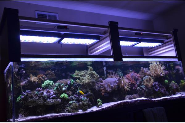 Лед освещение в аквариум