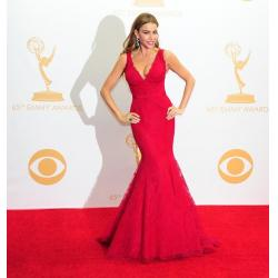 China V Neck Red Lace Celebrity Evening Dresses Sofia Vergara , Long Evening Gowns on sale