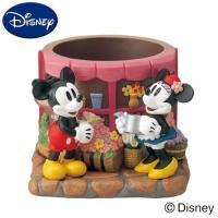 OEM Interior Decorative  Flowerpot with Wholesale Price