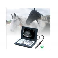 Laptop Veterinary Portable Ultrasound Machine Full Digital Ultrasonic Diagnostic System