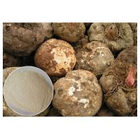 CAS 37220 17 0 Konjac Glucomannan Powder , Pure Konjac Extract Powder Food Ingredient