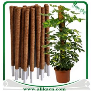 Coconut Plant Stakes Climbing Plant Support Coconut Fiber