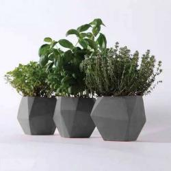 China garden smart plant grow pots/folding plant pot with high quality on sale