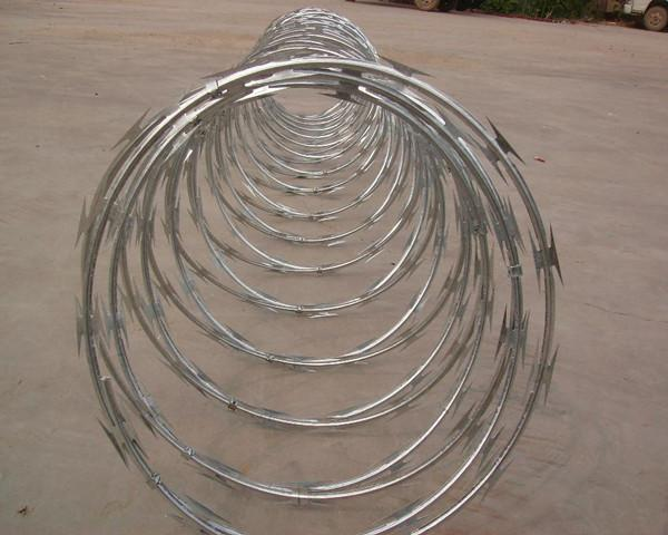 China High Protection Galvanized Barbed Wire Coil , Spiral Barbed Wire Fence BTO-18 supplier