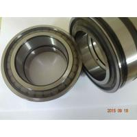 Full complement cylindrical roller bearing SL045014PP