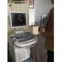 Multi - frequency Diagnostic Ultrasound Device Trolley Digital Ultrasound Scanner BIO 3000B+