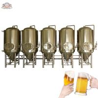 CE certificated microbrewery equipment with electricity heating or steam heating for brewpub, brewery, hotel, etc