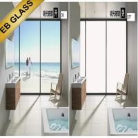 switchable privacy film, eb glass