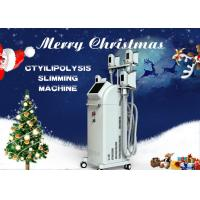 Painless Fat Freezing Liposuction Coolsculpting Cryolipolysis Machine With 4 Handles