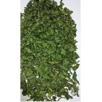 AD Dehydrated Parsley Leaf 2018 New Crop with ISO, HACCP, FDA certificates