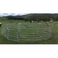 15m Diameter Horse Round Yard Panel 22Pcs incl. 3m tall Gate 30x60mm