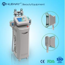 China Gold search keyword cryolipolysis beauty machine for cellulite on sale