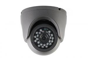 1/3 1/2.8 Sony CCD Analog Dome Camera , IP66 Outdoor Waterproof CCTV Camera