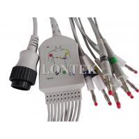 Kanz PC-104 ECG Patient Cable Cardioline Remco , EKG Cable IEC