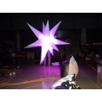 Interesting Show Custom Inflatable Products Different Style And Color / Model With Light